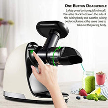 Load image into Gallery viewer, Slow Juicer,AMZCHEF Slow Masticating Juicer Extractor Professional Machine with Quiet Motor/Reverse Function,Cold Press Juicer with Brush,for High Nutrient Fruit & Vegetable Juice - PrettyLad