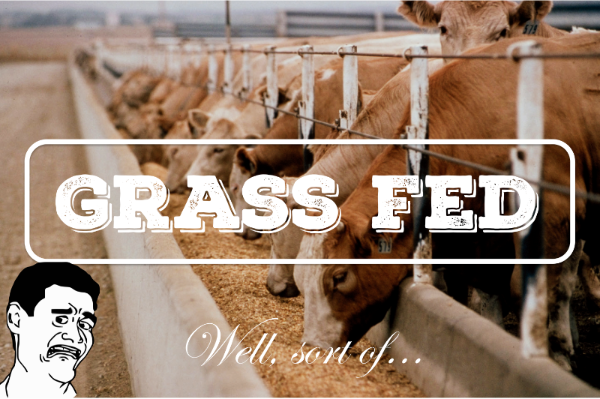 The Great Lie of Grass-Fed Beef