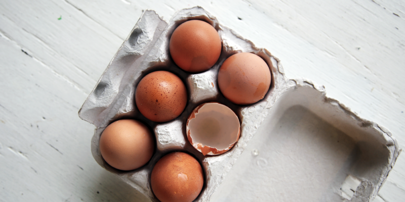 Eggs 101: What to Look for When Shopping for Eggs
