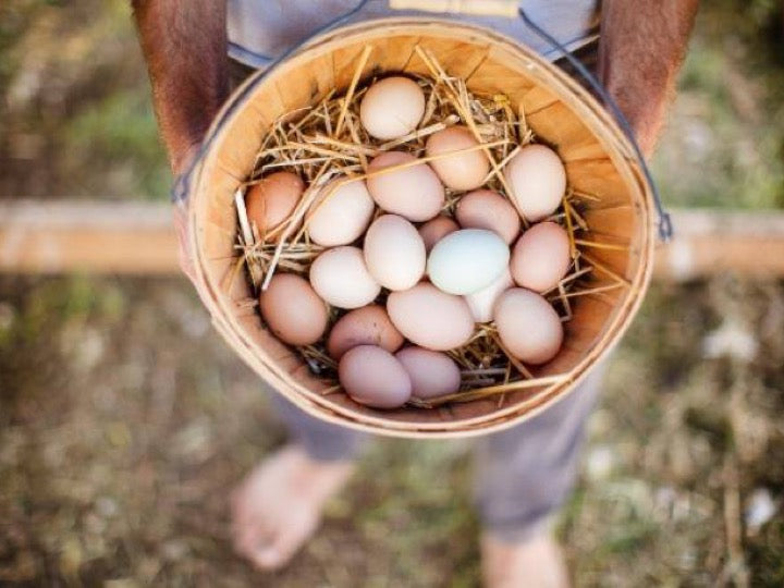 5 Dozen Pastured Eggs - Free Home Delivery (shipped separately)