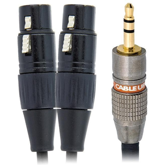 1/8in TRS Male to Dual XLR Female Y-Cable-The Tech Closet by DAVIS-The Tech Closet by DAVIS