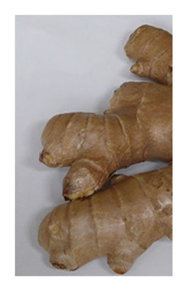 Ginger root 2 oz. Bulk Herb