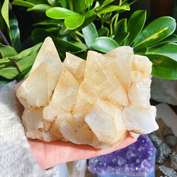 Dog Tooth Calcite Cluster 1