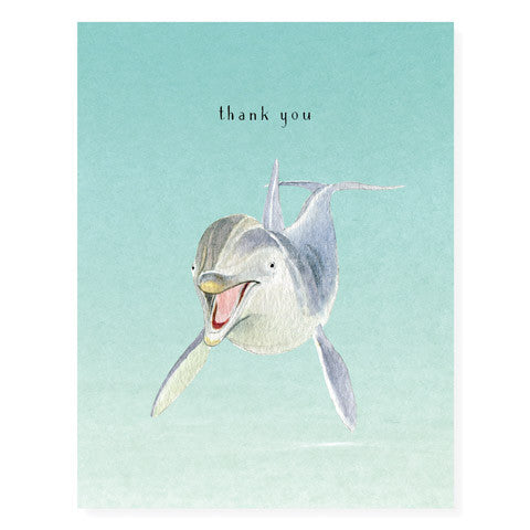 Hello Dolphin - Occasion Card