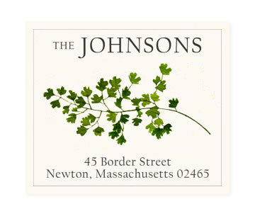 Maidenhair Fern - Return Address Labels