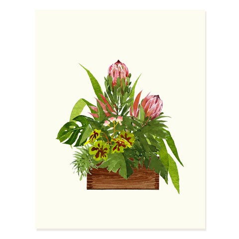 Protea Arrangement - Occasion Card