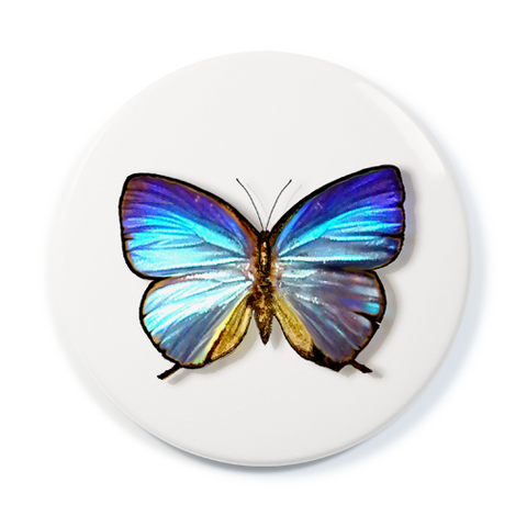 Blue Morpho - Pocket Mirror