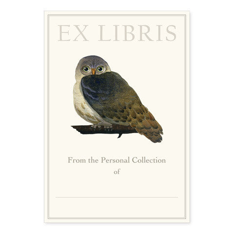 Elf Owl - Large Bookplates