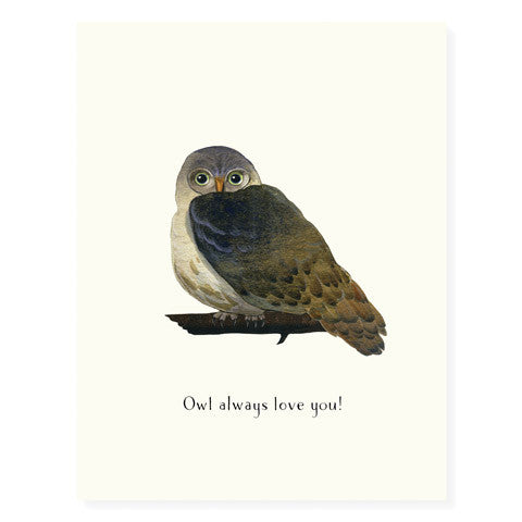 Hoot Do You Love? - Occasion Card