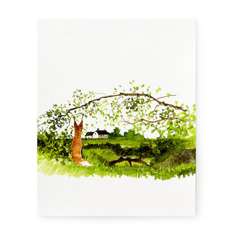 Fox with Arched Branch - Art Print