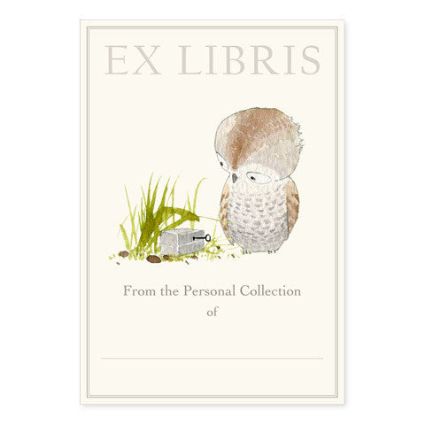 Curious - Large Bookplates