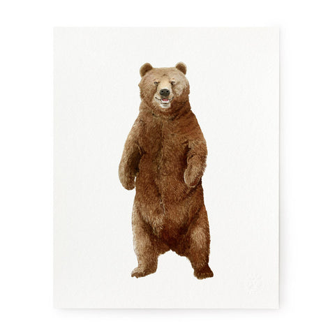 Bear - Art Prints