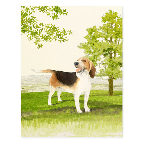 Beagle - Occasion Cards