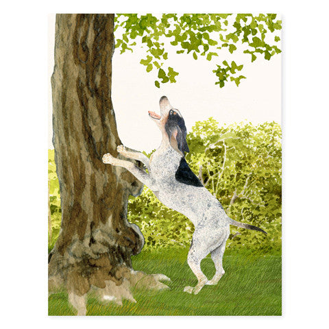 Coonhound - Occasion Cards