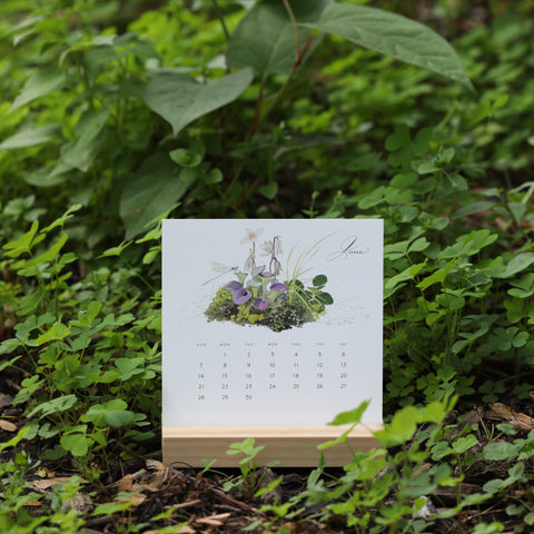 Nature Walk - 2020 Desk Calendar