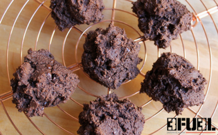 Delicious Double Chocolate Protein Cookies