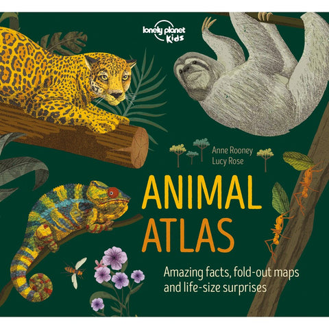 Animal Atlas By Anne Rooney
