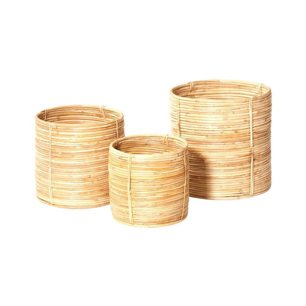 Shenan Baskets