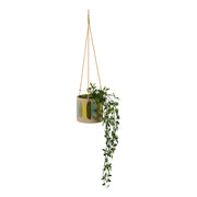 Habitat101 - Frankie Hanging Planter Pot 15cm Green