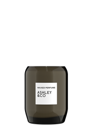 Ashley & Co. - Waxed Perfume Candle: Vine & Paisley