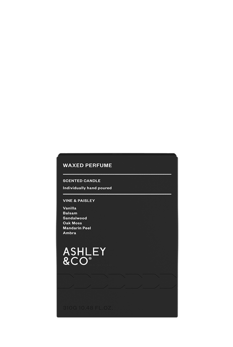 Ashley & Co - Waxed Perfume Candle: Vine & Paisley