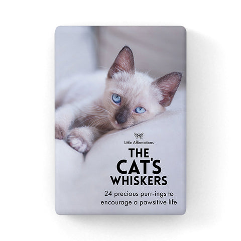 Little Affirmations Box - The Cat's Whiskers