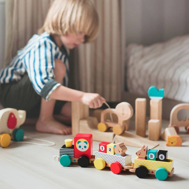 Petit Collage - Wooden Pull Along Train Toy
