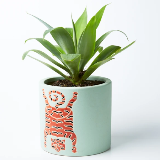 Jones & Co - Tibetan Tiger Planter Green