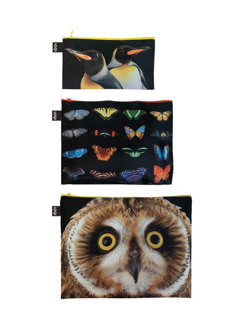 LOQI - Zip Pocket: National Geographic Collection (Set of 3) - Owl Butterflies Penguins
