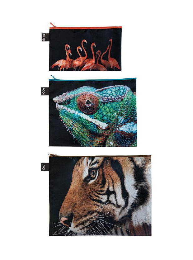 LOQI - Zip Pocket: National Geographic Collection (Set of 3) - Tiger Chameleon Flamingos