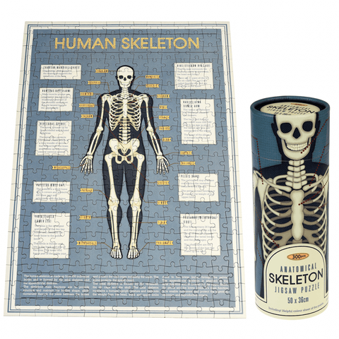 Rex London - Puzzle In A Tube Anatomical Skeleton