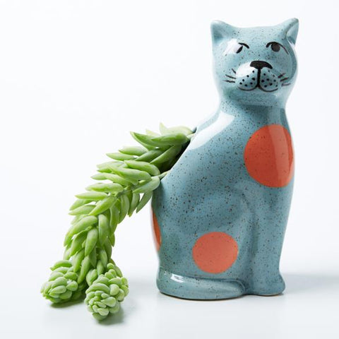 Jones & Co - Perry Cat - Blue
