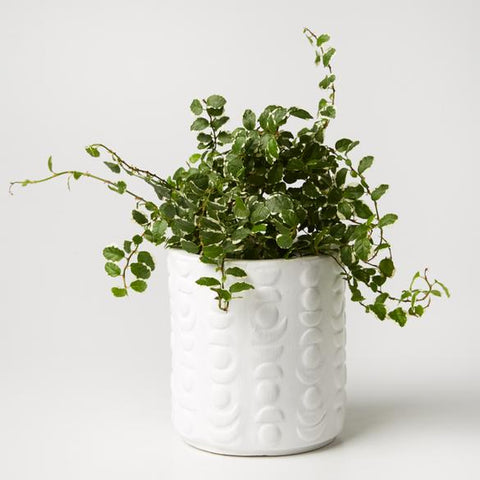 Jones & Co - White Totem Planter