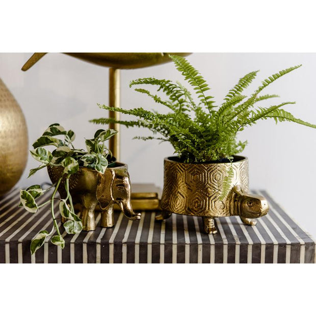 Elephant Planter New Bronze