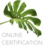 Essentials Body Sugaring Certification Program