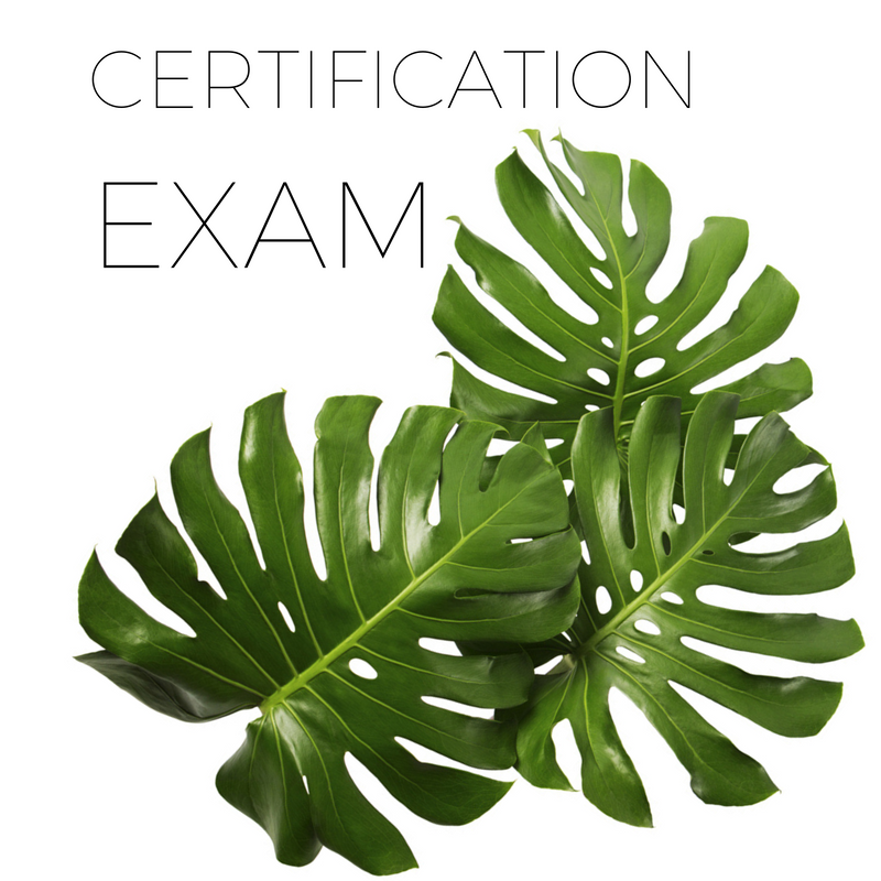 Body Sugaring Certification Exam!
