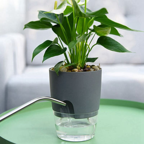 Self Watering Plant Pot - water input mouth