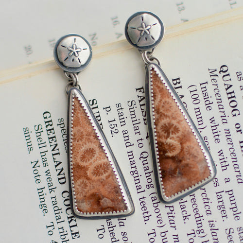 Fossilized Coral + Sand Dollar Stud Earrings