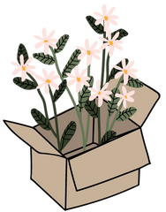 Box with flowers by Mimi & August