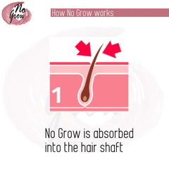 How No Grow Works Slide 1