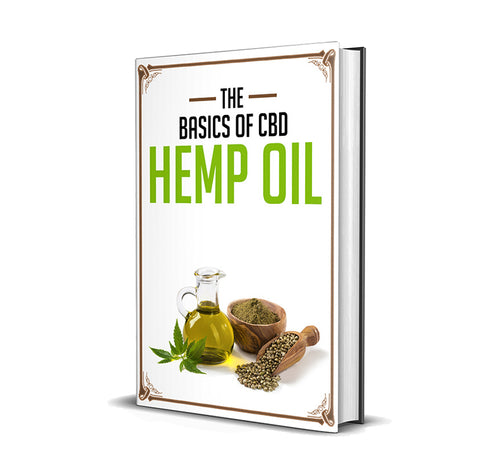 The Basics of CBD Hemp Oil