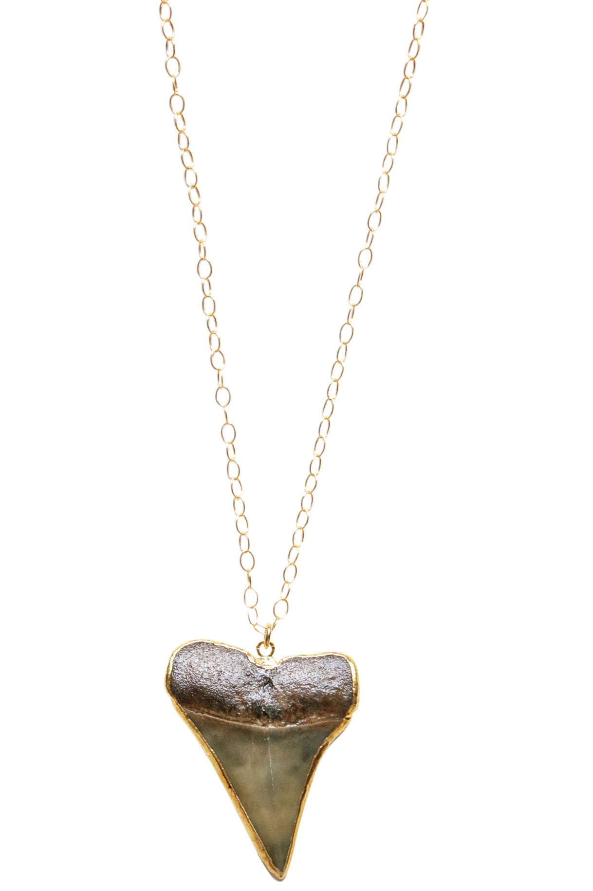 Sharks Tooth necklace with Dark Black Mako Shark's Tooth in 24k Gold on 14k Gold Filled petite chain