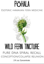 Load image into Gallery viewer, Wild Fern Medicinal Tincture