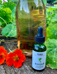 Nauā Fern Essence Edible Hydrosol (TENDERNESS)