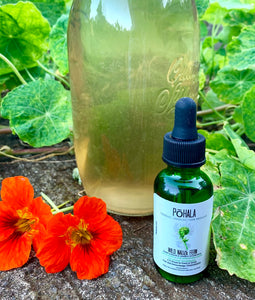 Hō'i'o Kula Fern Essence Edible Hydrosol (REST)