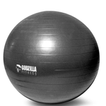Warrior Strength Yoga Ball