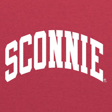 Load image into Gallery viewer, Original Sconnie Tri-Blend T-shirt - Vintage Red