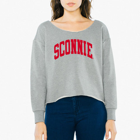 Sconnie Arch Am App Womens Heavy Terry Crop Sweatshirt - Zinc
