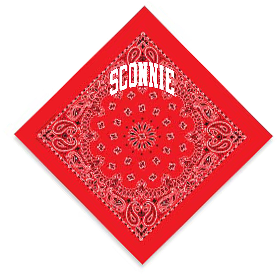 Sconnie Arch Paisley Bandana - Red