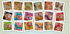 products/C-series-Collage_c8a4e05b-cd27-4532-b25d-5fae17f2b3b8.png